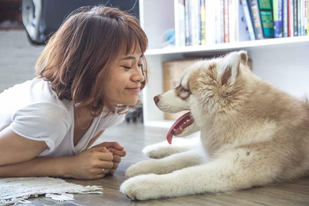 woman girl animal dog